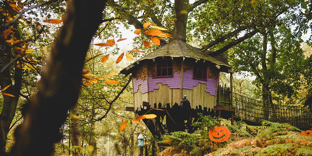 Image of Bewilderwood this autumn